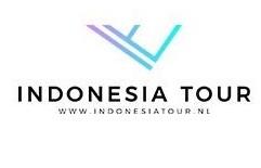 Auto met chauffeur Indonesië